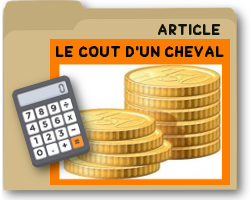 lecoutdunchevalarticle.png