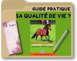 guidepratiquesurlaqualitedeviecheval.png