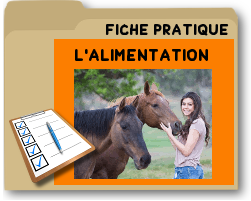 alimentationducheval.png