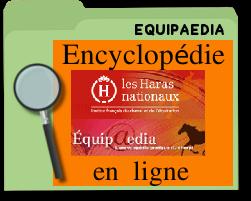 equipaediaencyclopédieenligne.png