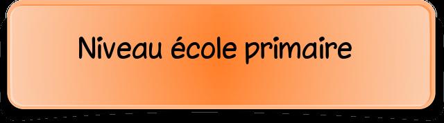 niveau école primaire.png