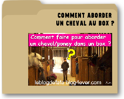 commentaborderunchevalaubox.png