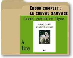 lechevalsauvage.png