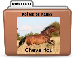poemechevalfou.png