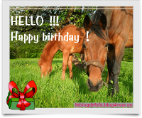 cardhappybirthdayhorse.png