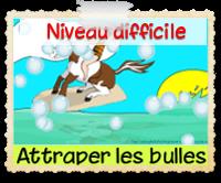 https://static.blog4ever.com/2010/09/437182/attraperlesbullesdifficile.png?rev=1595777970
