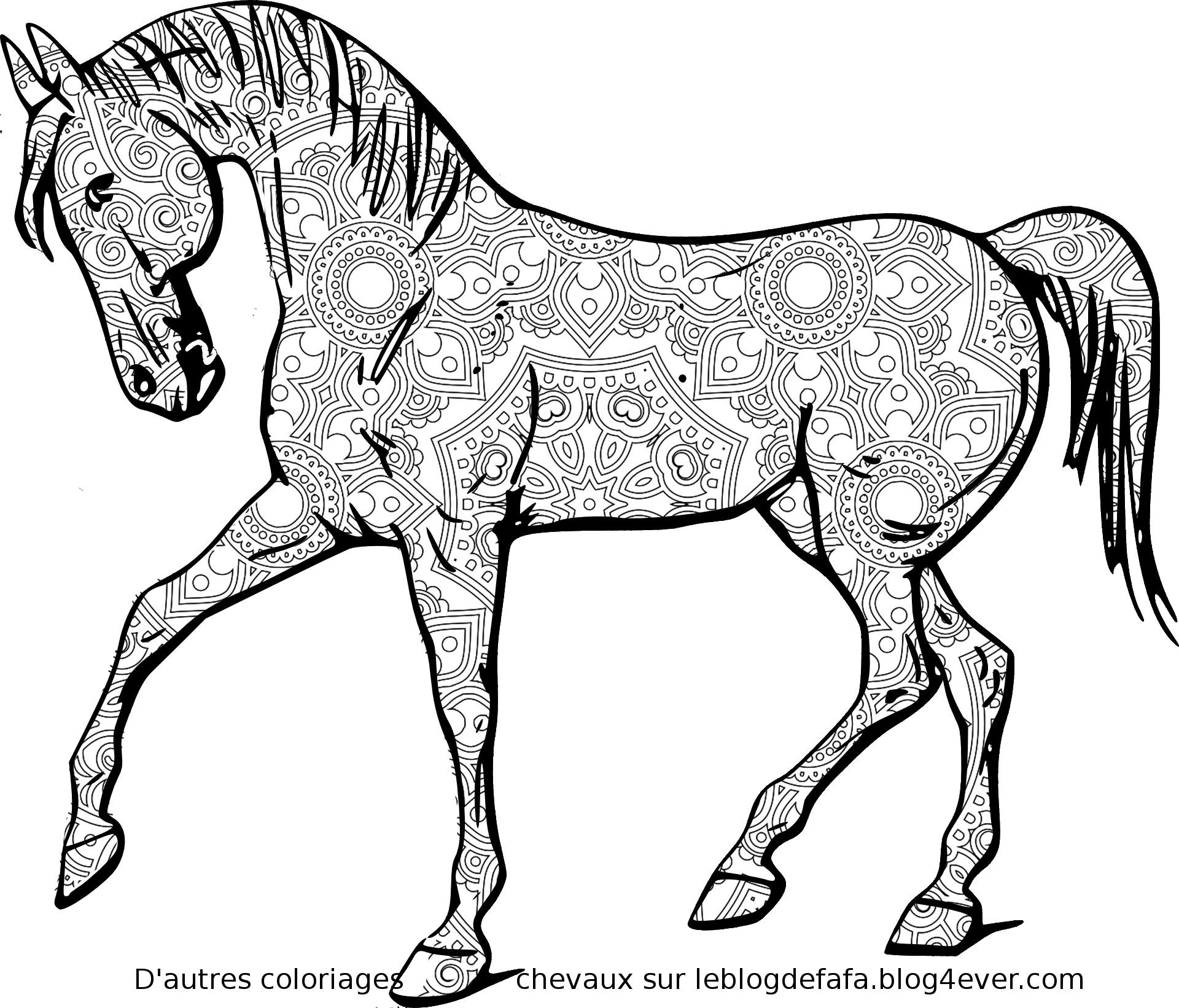 6 Mandalas Chevaux Gratuits A Imprimer Mandalas Horses Colorings Free To Print Le Blog Des Fans De Poneys Et De Chevaux