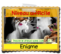https://static.blog4ever.com/2010/09/437182/enigmedifficilejeuchevalgratuit.png?1536242501