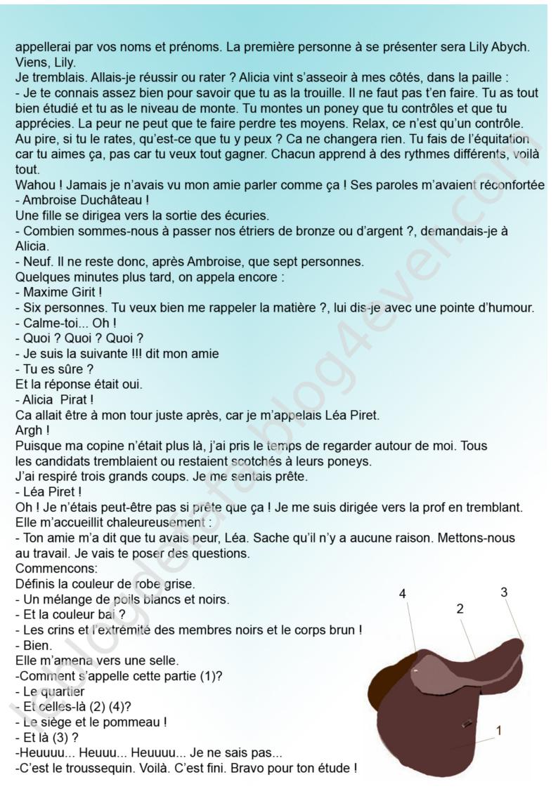 https://static.blog4ever.com/2010/09/437182/histoiregratuitechevauxlea5.png