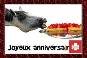 carte humoristique cheval anniversaire