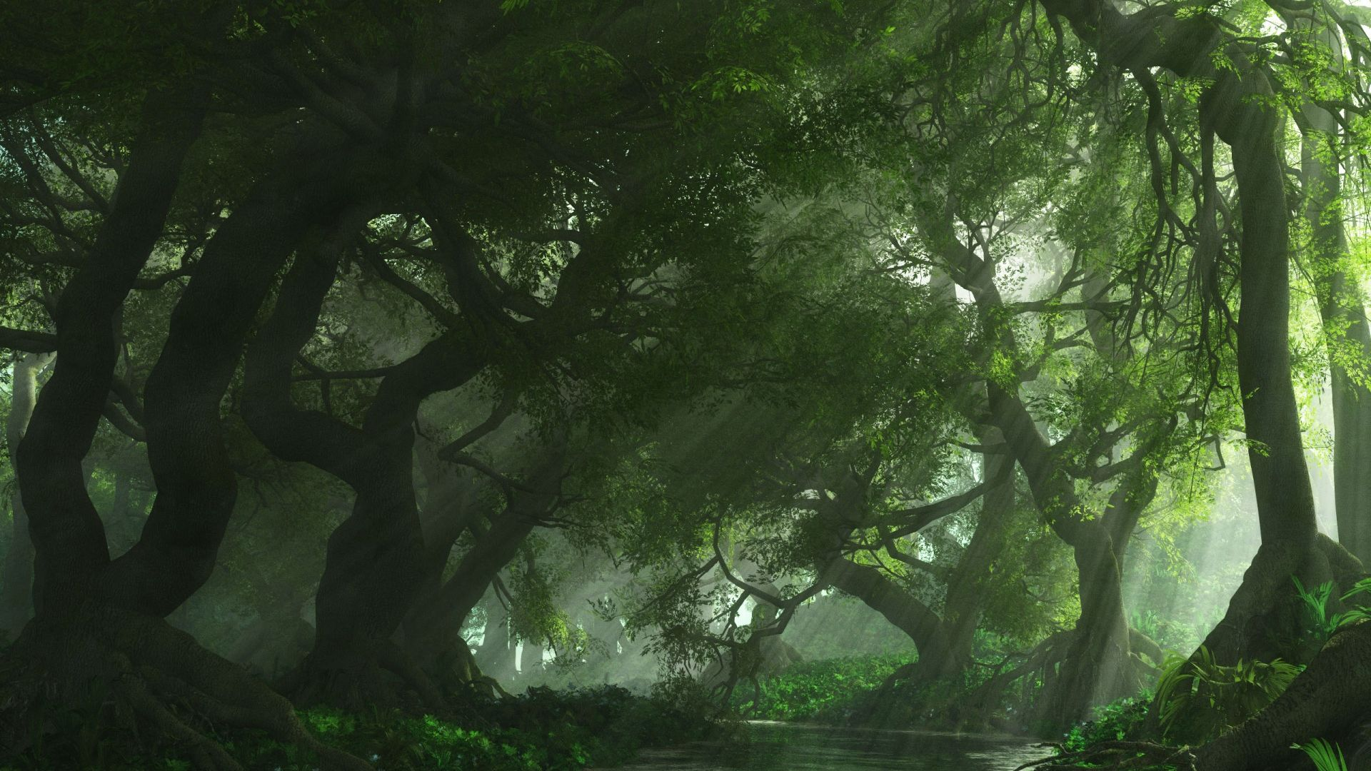 3D_creation_foret_-_1920x1080.jpg
