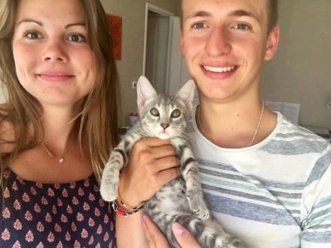 chatons adopté1.jpg