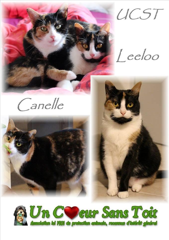Leeloo et Canelle