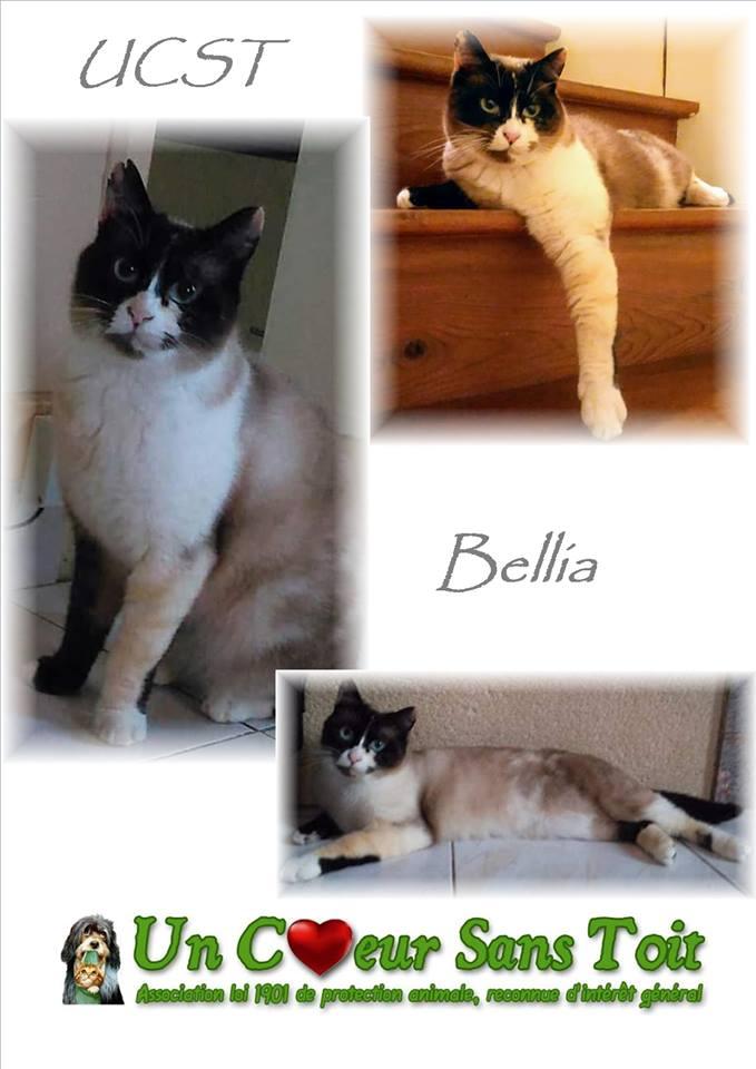 Bellia, née le 01/01/2015