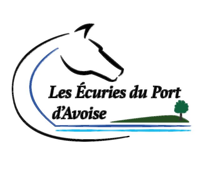 logo pour le site.png