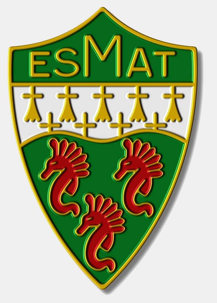 ESMAT 3 ombré.jpg