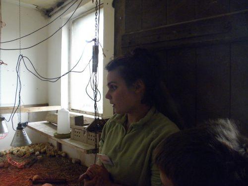 visite guidée poussinière