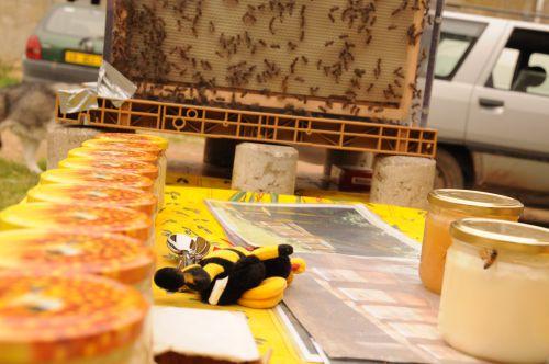 Alain l'apiculteur
