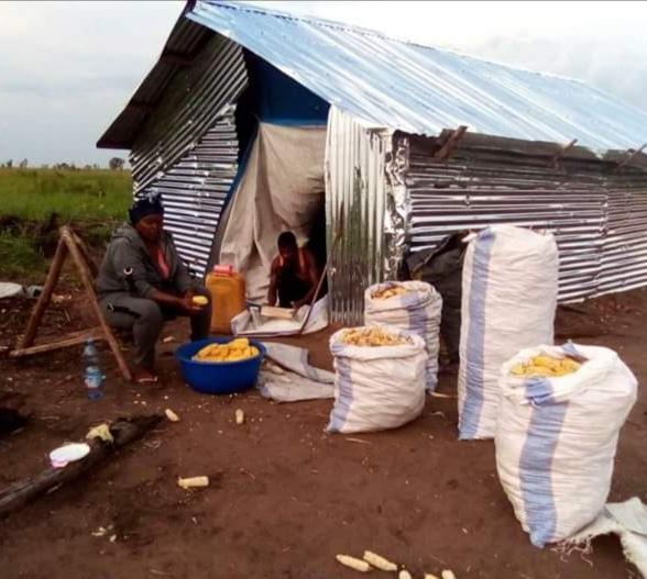 Securite alimentaire et developpement rural.jpg