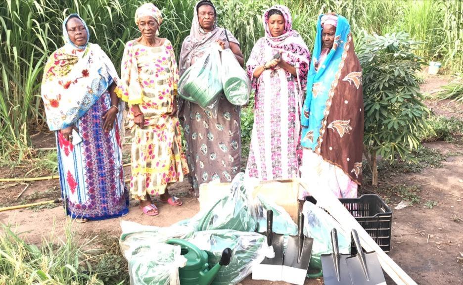 Senegal et securite alimentaire.jpg