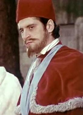 cardinal de guise.png