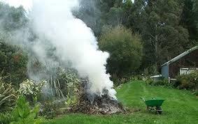 brûler dechets.jpg