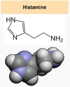 molécule histamine.png