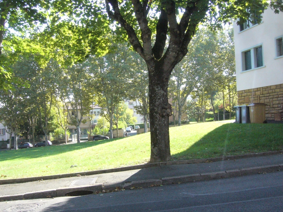 rue charcot 5 sur Martini.jpg