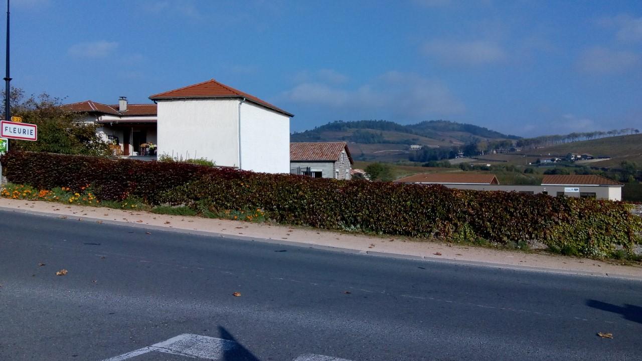 Fleurie village 2.jpg
