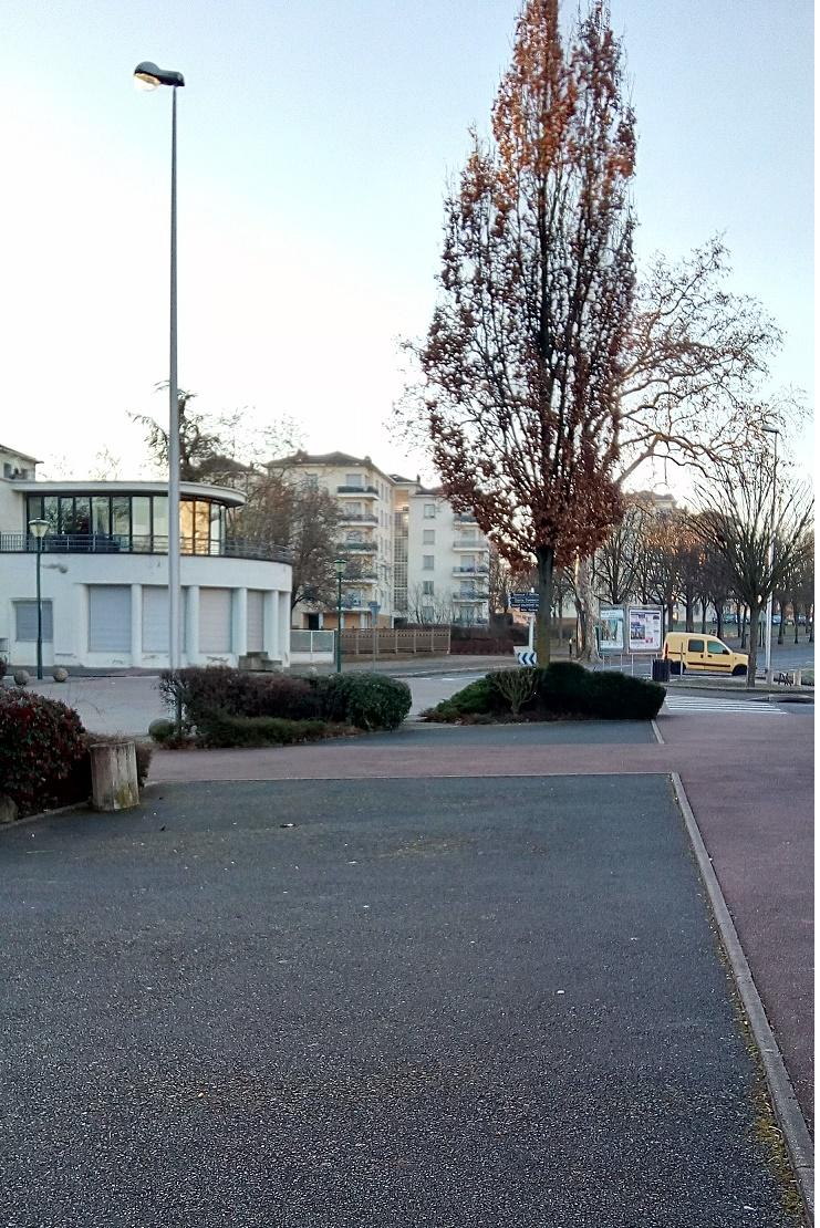 rotonde et avenue L bonnevay.jpg
