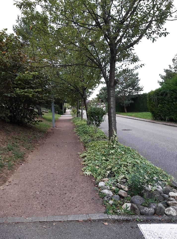 entrée chemin des charretiers depuis l'avenue général de gaulle une cote qui dure qui dure Limas.jpg