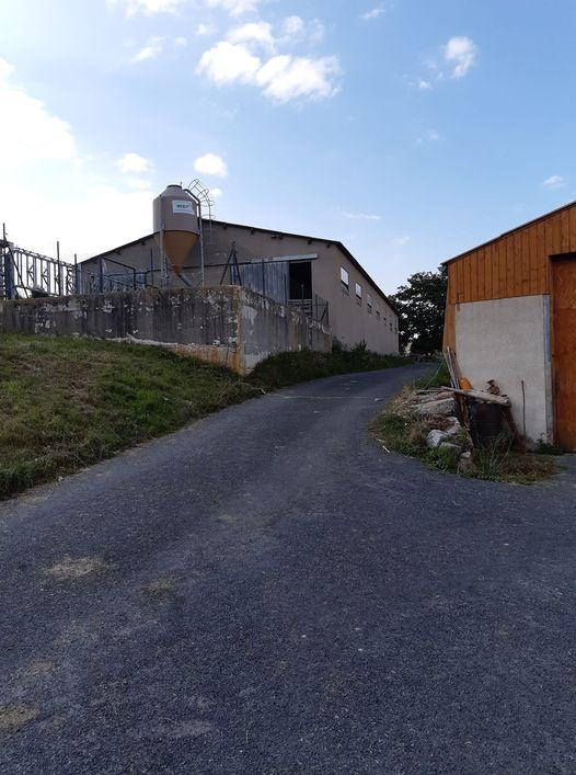 hangar construit pour servir d'écurie à la variété de vaches Aubracs qui restent au pré tout l'été Bugeac aout 2021.jpg