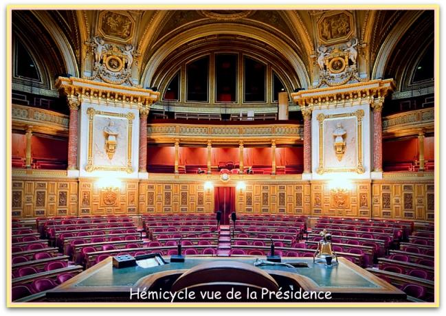Hemicycle-vue-presidence[1].jpg