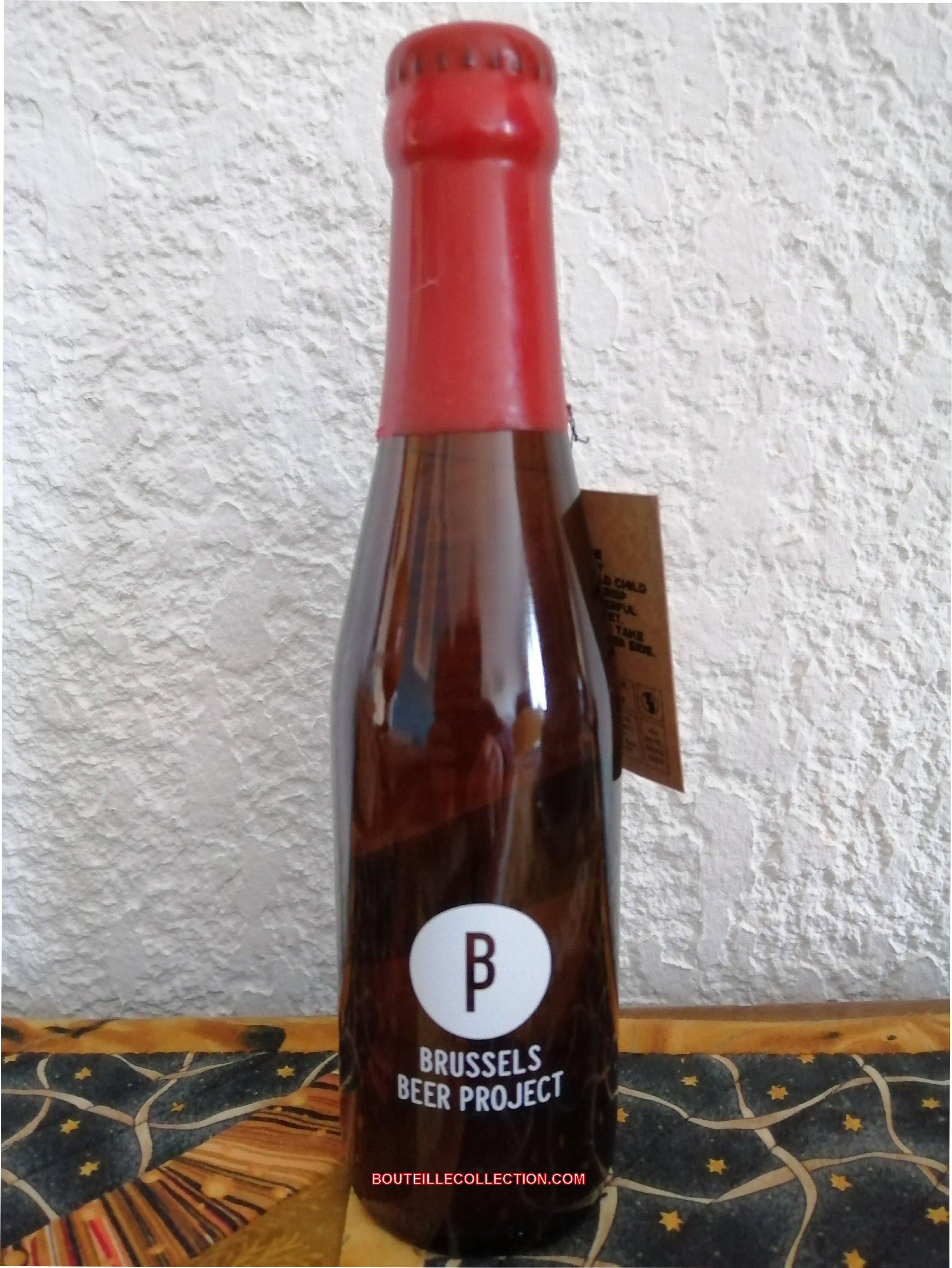 BRUSSELS BEER PROJECT WILDER CHILD 25CL B OK OK  .jpg