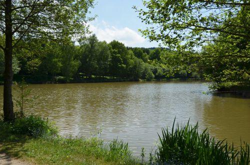 L'étang Magaud