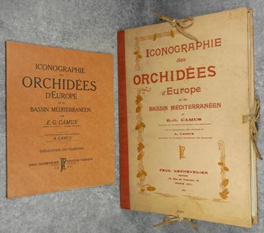 E.-G. Camus - Iconographie des orchidées d'Europe et du bassin Méditerranéen (Planches et explication).jpg