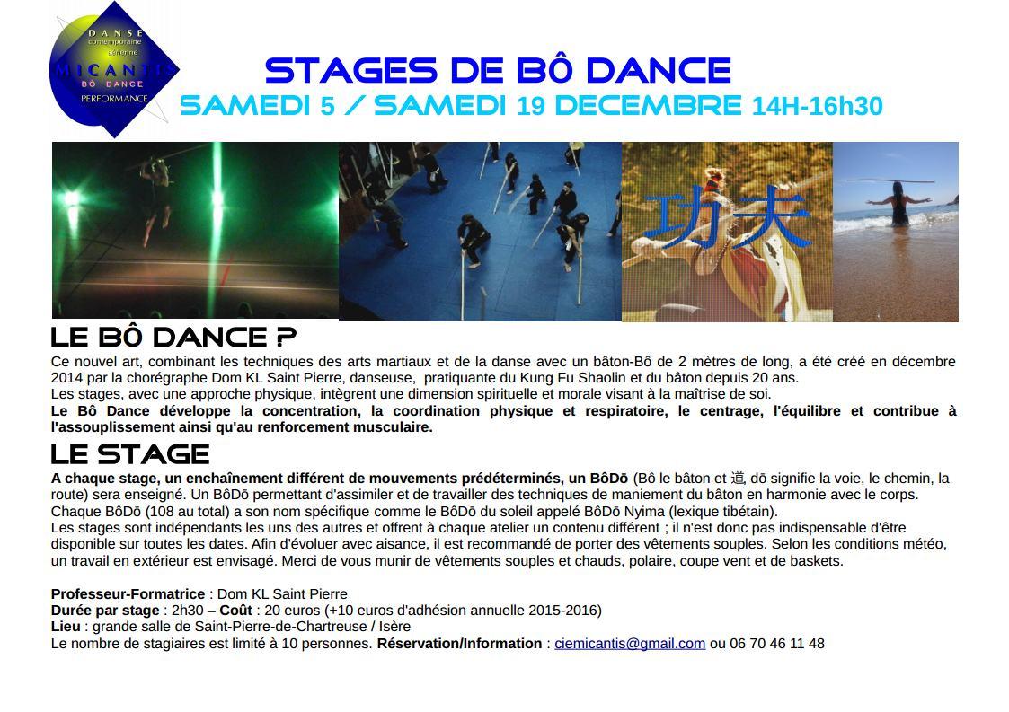 Stages de Bô Dancejpg_Page1.jpg