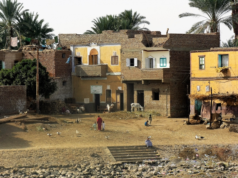 Egypte janvier 2008 N° 2 198.jpg