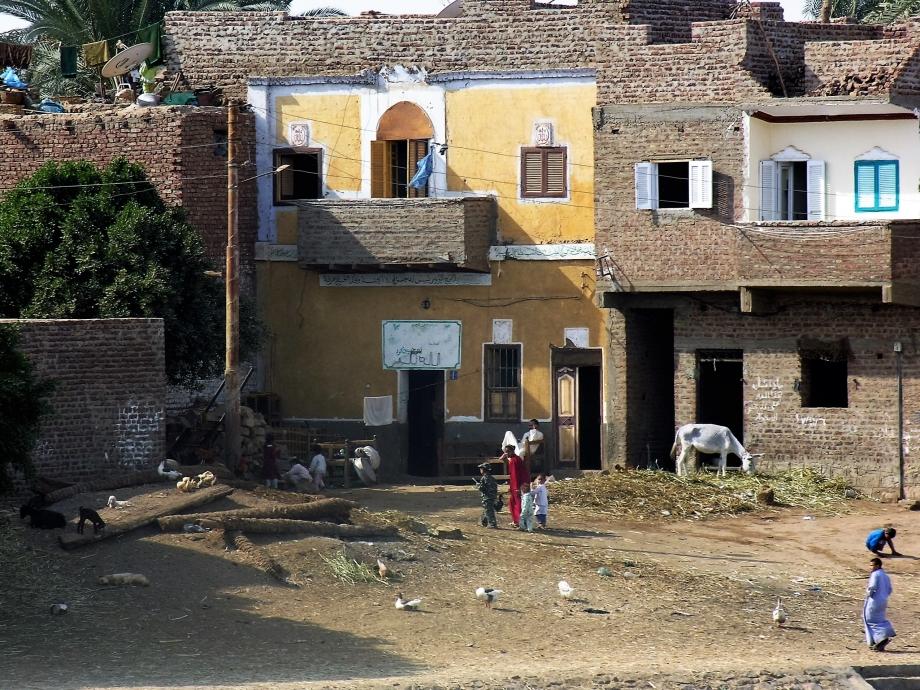 Egypte janvier 2008 N° 2 199.jpg