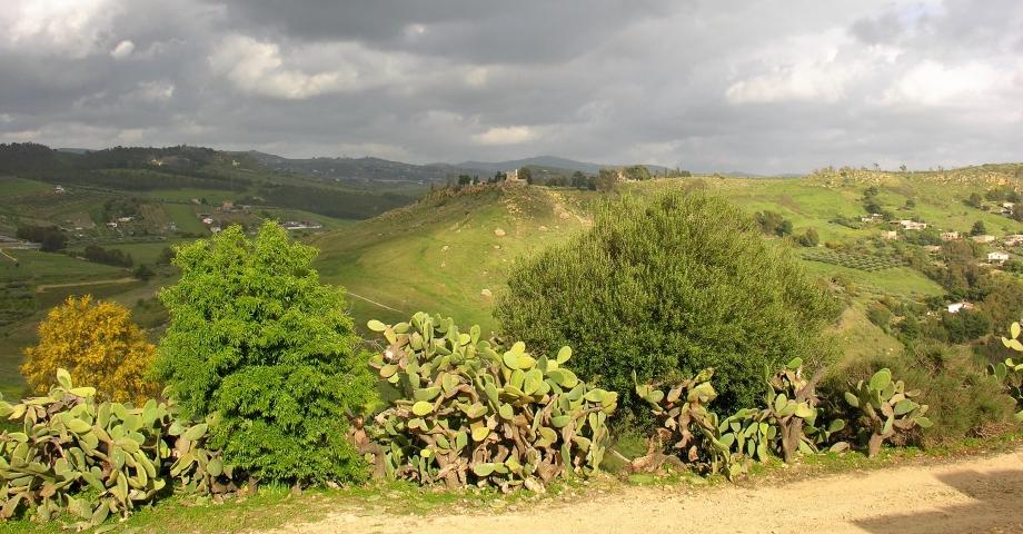 Sicile n°2 - avril 2012 - 1er Nikon 056.JPG