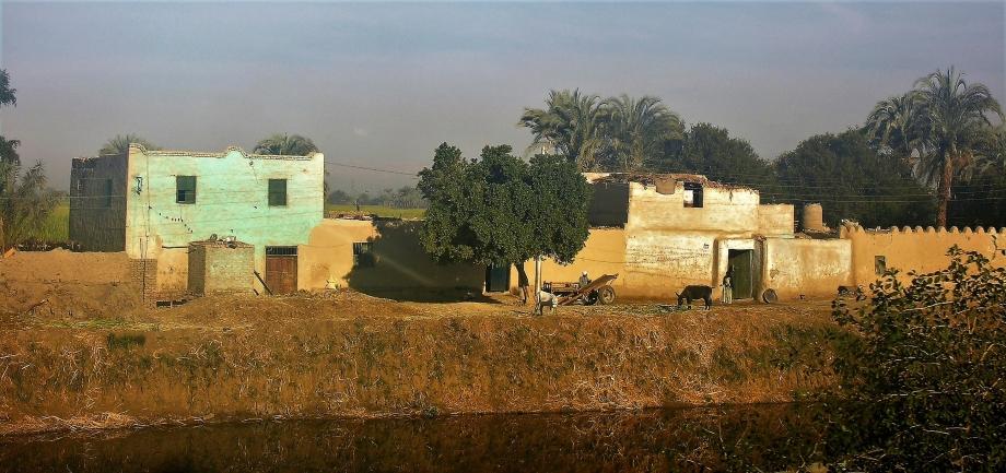 EGYPTE n°3 - Janv. 08 041.jpg