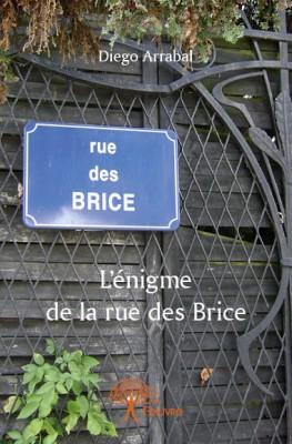 L'Enigme de la rue des Brice.jpg