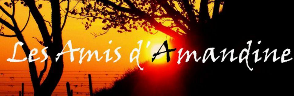 Les Amis d\'Amandine