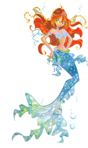 bloom sirène