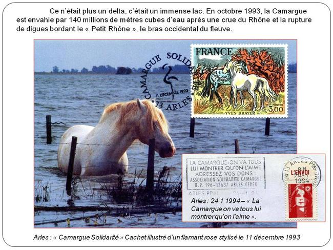 LA CAMARGUE original.jpg