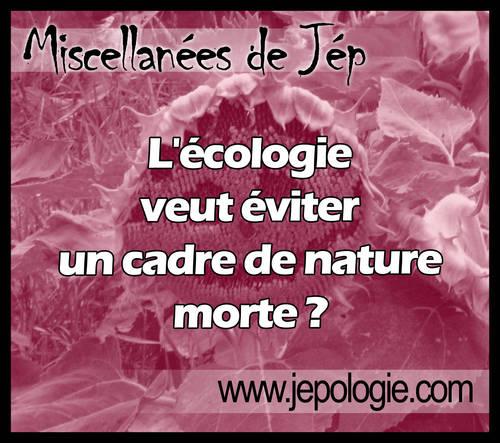 L écologie veut éviter un cadre de nature morte.jpg