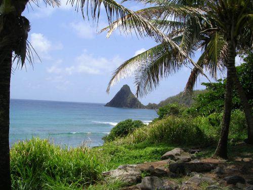 Martinique 7