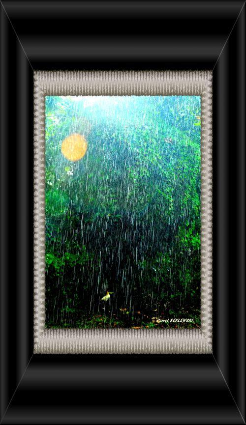 foto de pluie tropicale