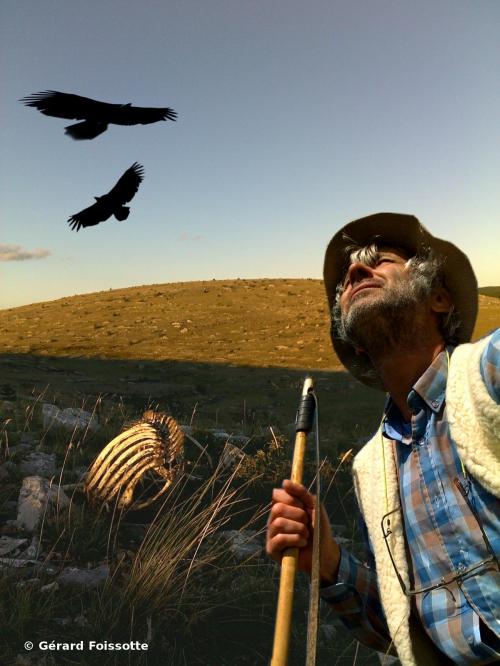 le vol des vautours couverture roman.2.jpg