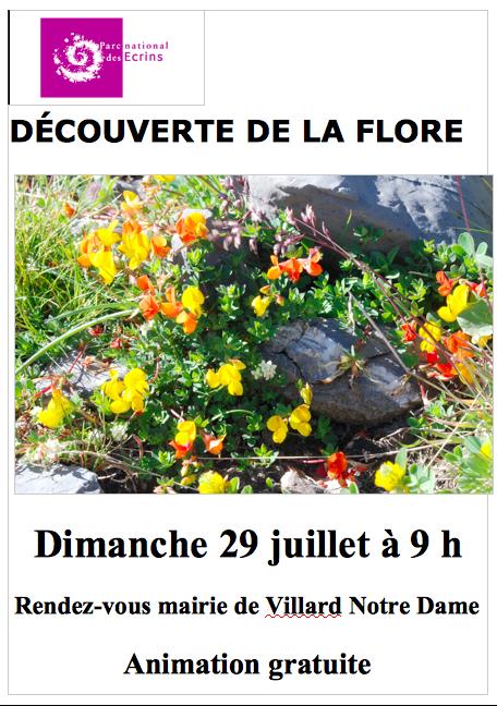 Affiche Flore -.jpg